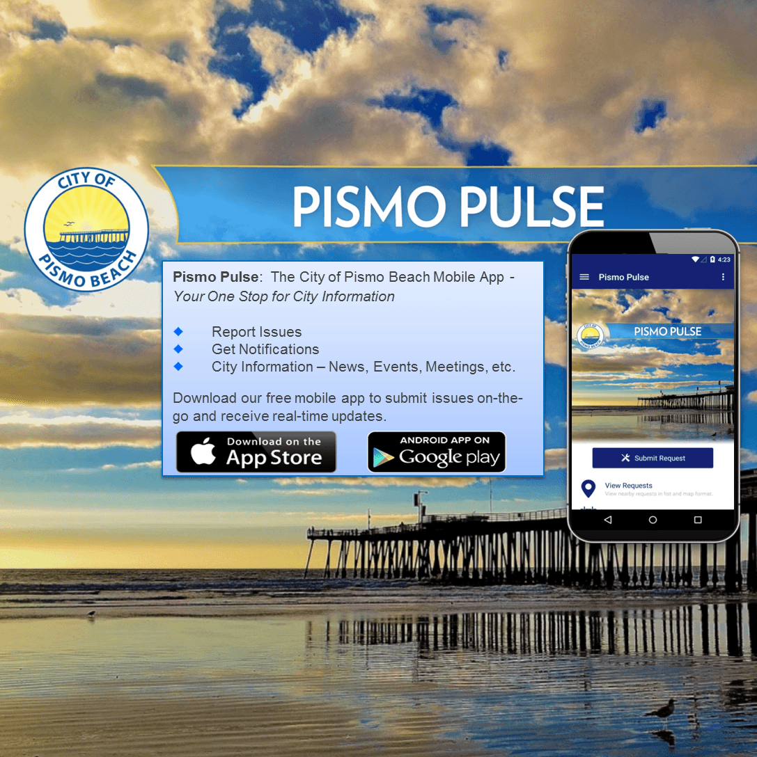 Pismo Pulse Web Banner picture7